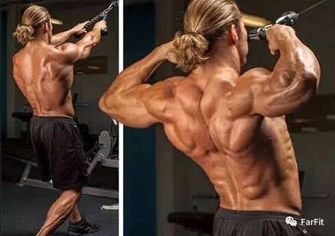 """""""繩索面拉,拉出肩膀和背部的立體肌肉感!"""""""