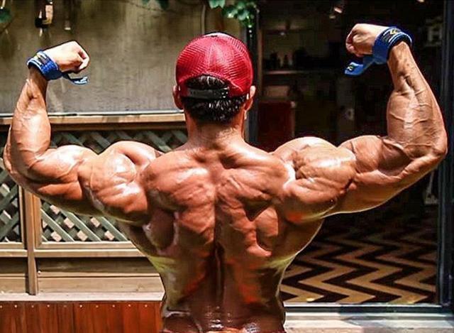 """""""多樣化背部增肌訓練:8個動作讓背部肌肉壯實充盈有力量"""""""