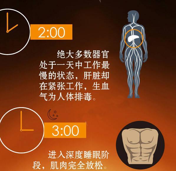 """""""人體24小時使用手冊,這樣的作息才健康"""""""
