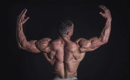 """""""大重量背部力量提升訓練:5個動作深度收縮肌肉增強全身基礎力量"""""""