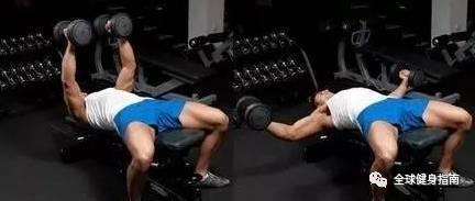 """""""不了解這2個動作,別說你會練肌肉!"""""""