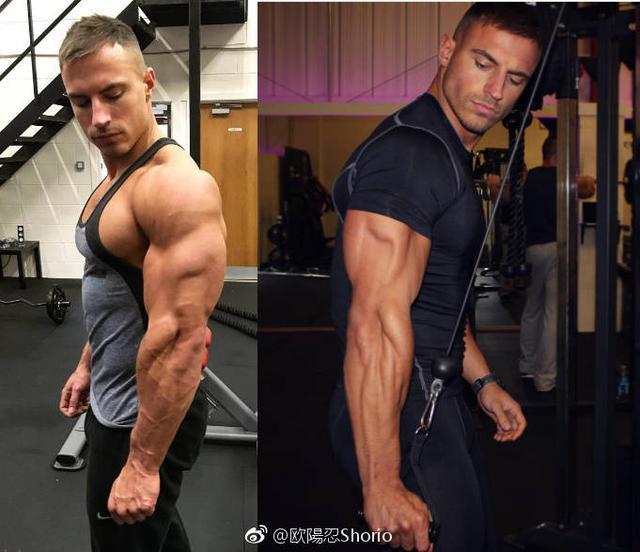 """""""肱三頭肌增肌訓練最好的3個動作,健身者必須要熟練掌握"""""""