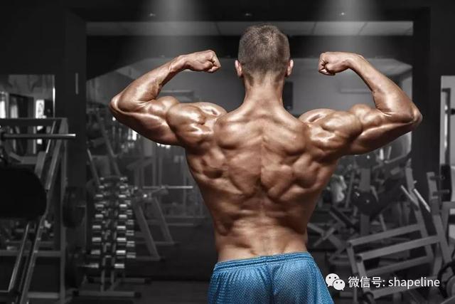 為什麼你總覺得自己的肌肉圍度太小?原因在這裡!