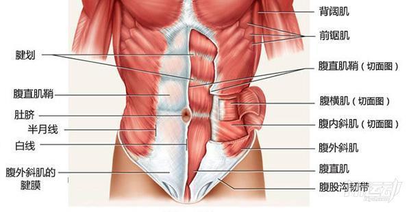10個動作無死角練腹肌!全角度每塊腹肌都練到了