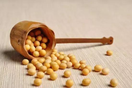 增肌、減脂離不開蛋白質,健身必備10大高蛋白!