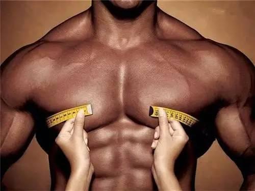 """""""這些健身心得,教你如何練出有型的胸肌"""""""