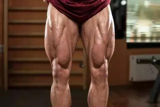 腿部訓練,突破增肌瓶頸!約P不腿軟的秘密武器