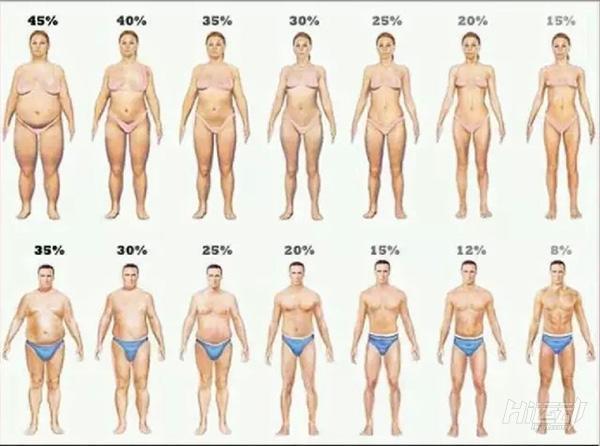 減脂應該做哪些運動?只做有氧能減肥效果有限