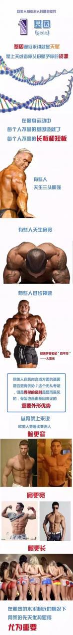 為什麼歐美有那麼多肌肉男?這就是原因……