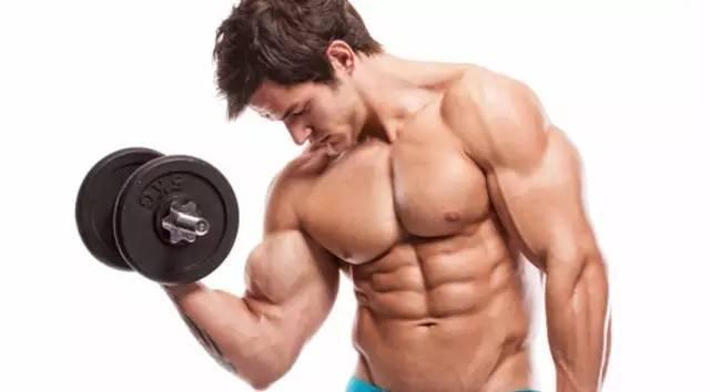 """""""健身停練多久肌肉會消失?"""""""