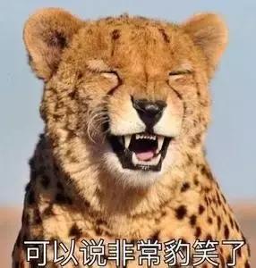 """""""健身情侶秀恩愛,這才是真正的花式虐狗!"""""""
