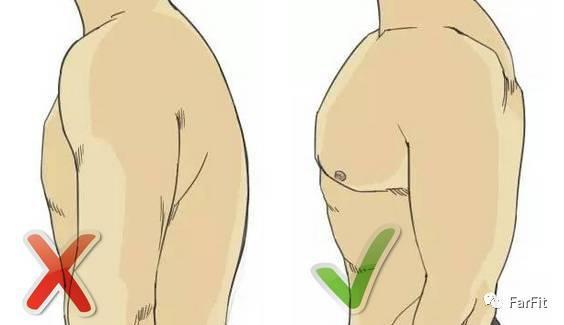 """健身中如何消除""""圓肩""""?拒絕含胸塌背,拒絕沒有氣質!"""