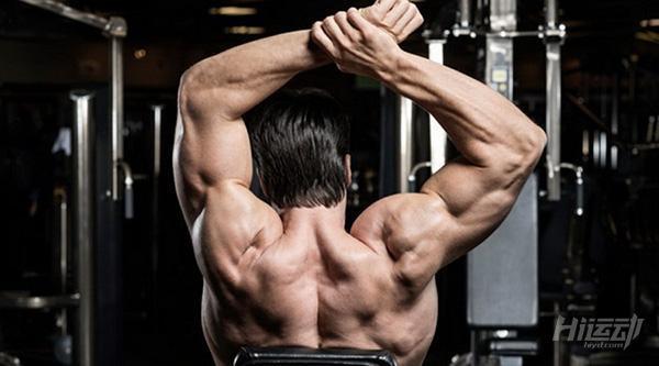 肩部訓練5個基本法則!可別盲目瞎練