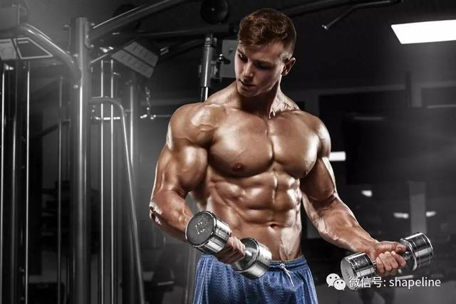 """""""如何讓增肌訓練時的""""泵感""""增加?遵從這幾點!"""""""