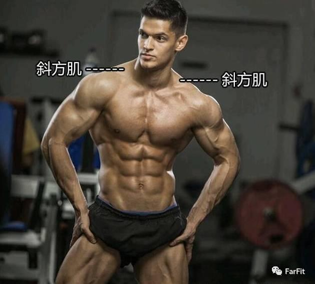 发达的斜方肌是力量的视觉冲击!斜方肌锻炼抓住一个字