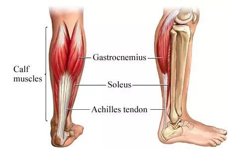 怎麼準確判斷肌肉拉傷還是撕裂?