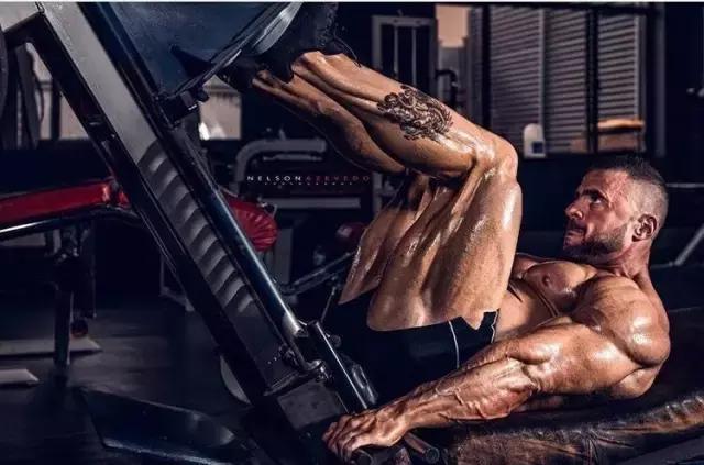 """""""健身界的葵花寶典""""這是一篇價值好幾萬的文章"""