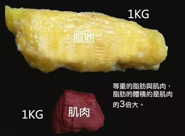 女孩體重對比表,為什麼體重標準,你看起來顯胖?