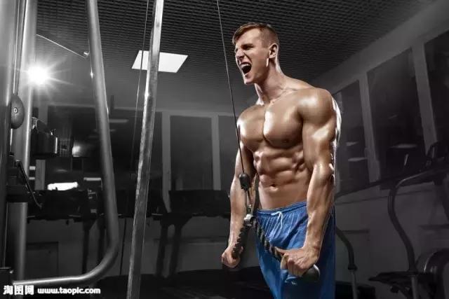 為什麼減脂也要做力量訓練?力量訓練要怎麼做?