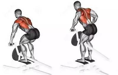 不練背容易駝背,練背的方法大全都在這裡了!