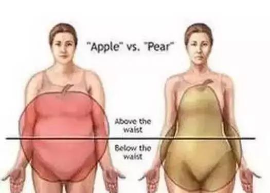 """拯救女生""""梨型身材"""",專治下半身肥胖的訓練動作!"""
