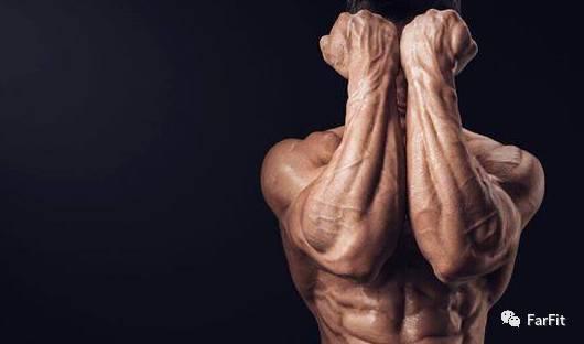 這2個健身動作體現身體綜合素質,哪個更難做?