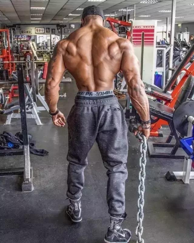 背部肌肉訓練計劃,練就虎背熊腰不是夢!