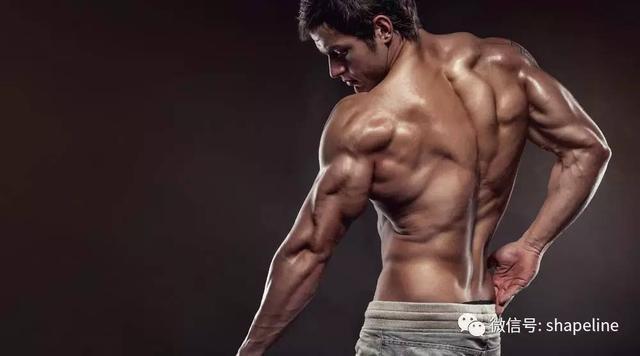 停止增肌訓練後,肌肉會掉的很誇張?