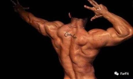 7個背肌訓練的經典動作,打造倒三角身材,這樣練就對了!