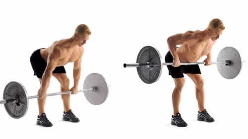 練背動作,男人把背練寬,女人把背練性感!